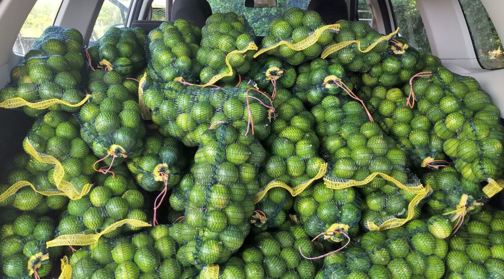 Limes off to market-H900